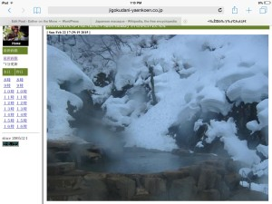 Live feed from Jigokudani Monkey Park